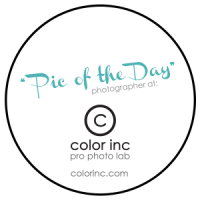 Color Inc. Pic of the Day Winner