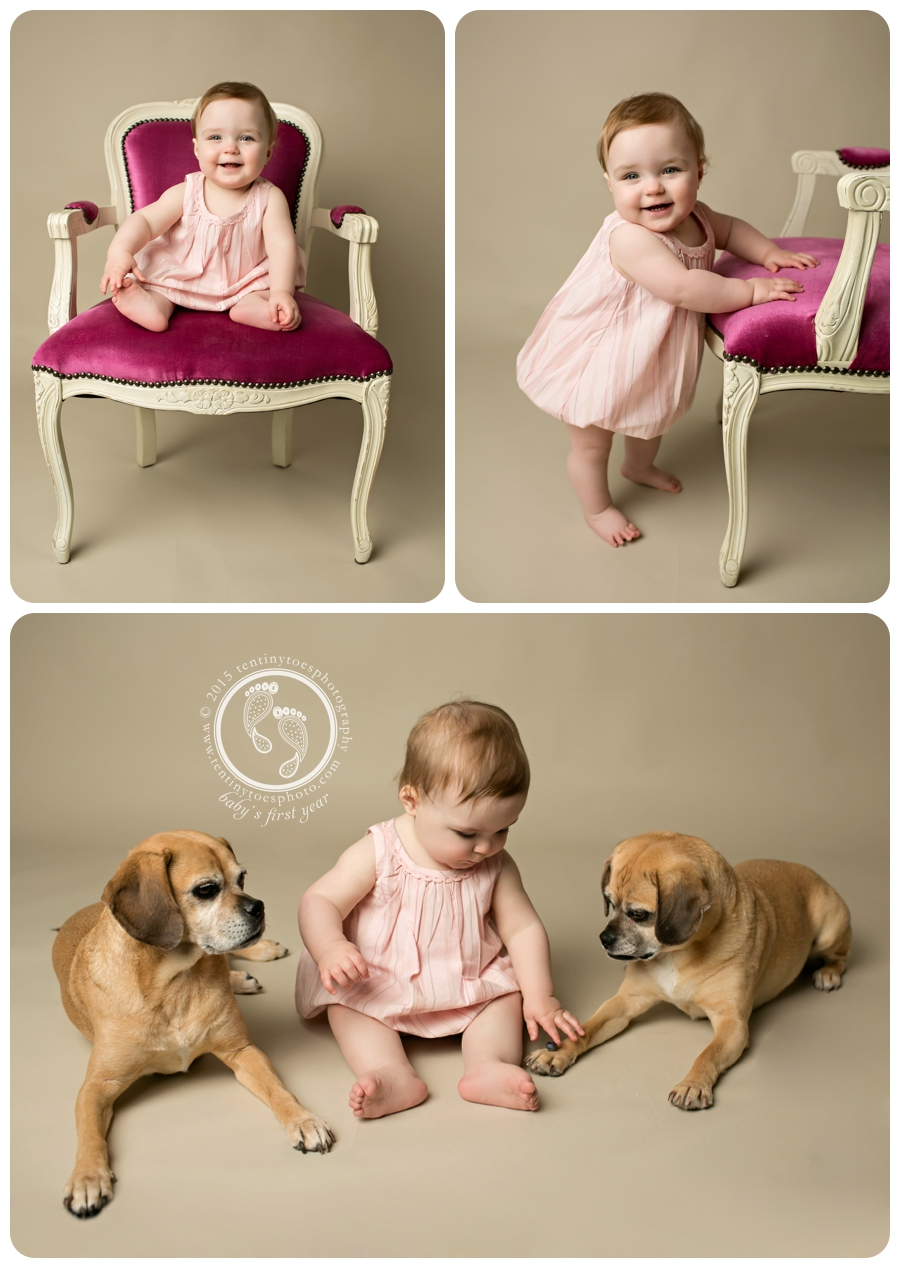 1 Year baby photos with dogs - Ten Tiny Toes Photography