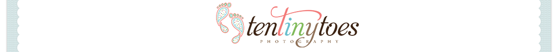 Minneapolis St. Paul Newborn, Baby, Child & Family Photographer | Ten Tiny Toes logo
